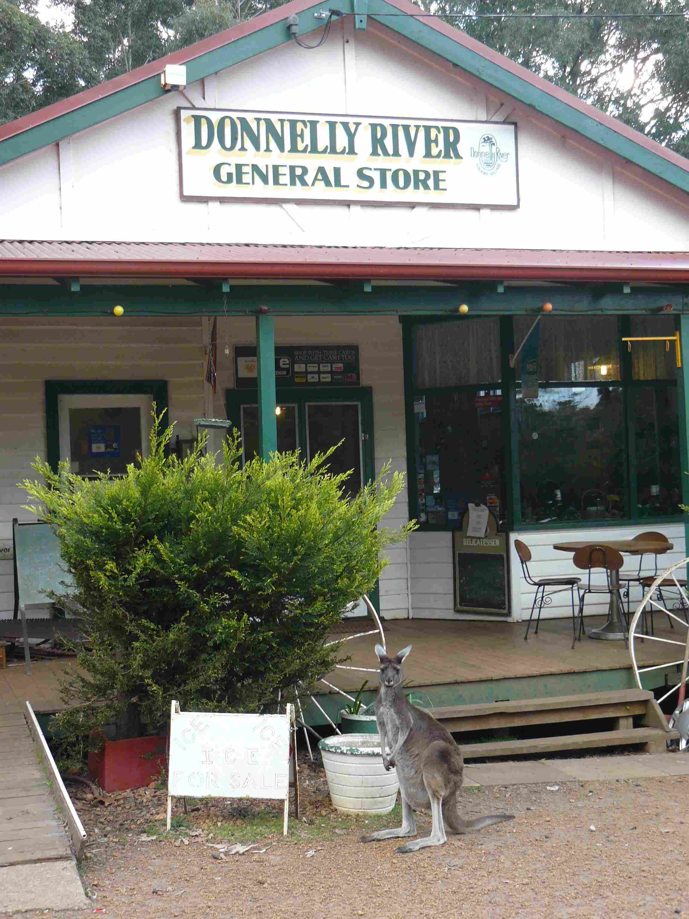 Donnelly River Village - more kangaroos, emus and lollies than you can poke a stick at (Warwick Sprawson)